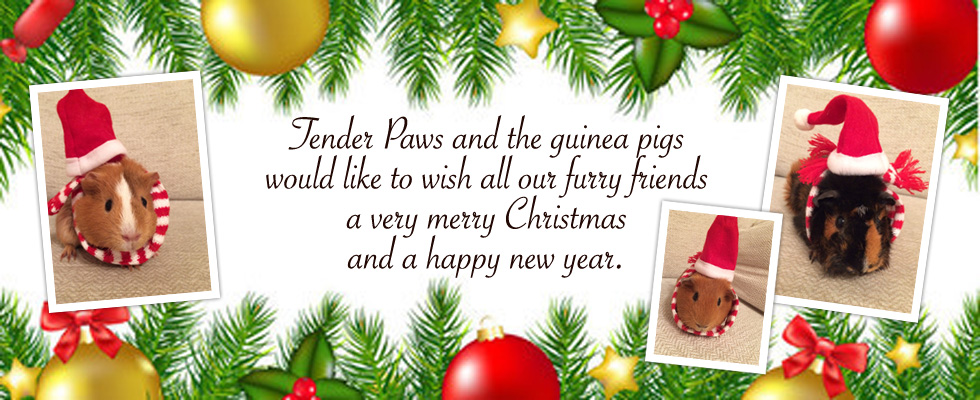 tenderpaws merry christmas